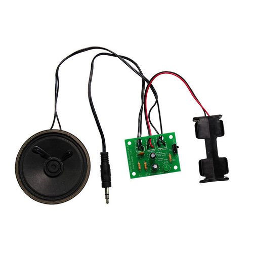 Mono Amplifier Kit with Power Switch and status LED